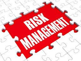پاورپوینت تئوری مدیریت ریسک مالی